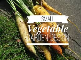 small vegetable garden try these layout ideas gardening channel