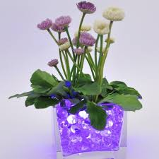 Water Beads Centerpieces Compare Prices On Glitter Water Beads Online Shopping Buy Low