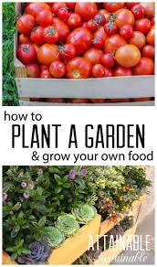 Vegetables For Container Gardening by 6182 Best Gardening For Food Images On Pinterest Organic