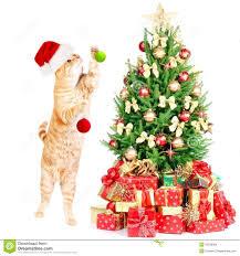 ginger santa cat and christmas tree royalty free stock image