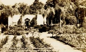 Mead Gardens Summer Camp - florida memory postcard of the mead botanical garden in winter