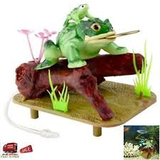 saim lucky coin frog toad live air aquarium ornaments