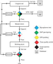 a resource for cell line authentication annotation and quality
