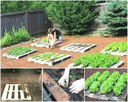 Pallet Gardening Ideas Design Ideas Pallet Garden Ideas And Outdoor Living Outdoor