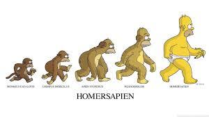 Planos De Casa 3d Apk 384 Os Simpsons Papeis De Parede Hd Planos De Fundo Wallpaper