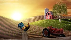Wallpaper Barn Farm Wallpapers Farm Live Images Hd Wallpapers Gg Yan