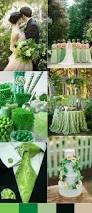 best 20 spring green ideas on pinterest lime green kitchen