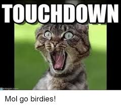 Meme Gen - touchdown meme gen mol go birdies meme on me me