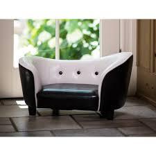 should your dog have sofa privileges cat u0026 dog beds