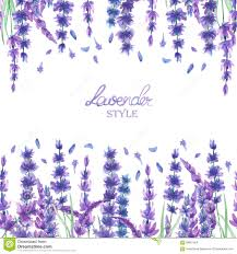 a card template frame border with the watercolor lavender flowers