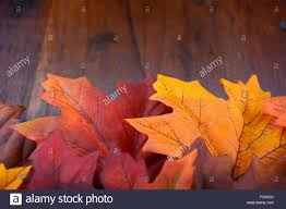 background for thanksgiving autumn fall background for thanksgiving or halloween with leaves