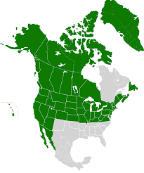 Map Of States Of America by Image Amp Map Of The United States Of America Viv Png