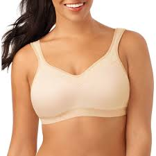 dream fit bras