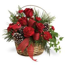 christmas flowers il christmas flowers poinsettias oswego yorkville