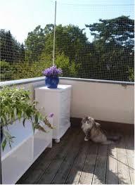 katzennetz balkon balkonnetze de