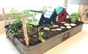 growing herbs indoors under lights grow your herbs indoors in this cute diy project hometalk