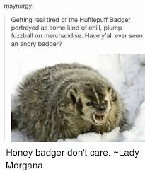 Meme Honey Badger - 25 best memes about honey badger dont care honey badger dont