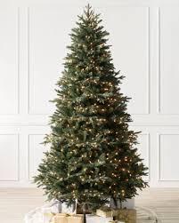 saratoga spruce tree