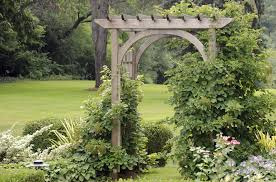 Backyard Arbors Impressive On Backyard Arbor Design Ideas 31 Backyard Arbor