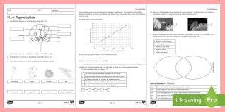 ks3 plant reproduction homework activity sheet homework