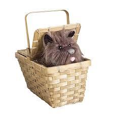halloween basket halloween trick or treat bags u0026 buckets costumeexpress com