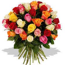 Rose Flower Images Cut Flowers Manufacturers Suppliers U0026 Dealers In Hosur Tamil Nadu