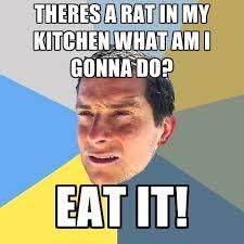 Meme Generator Espaã Ol - kitchen memes meme best hells kitchen memes bloomingcactus me