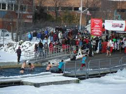 Trulia Vt by Ready To Take Plunge Penguin Plunge On The Burlington Vt Waterfront