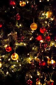 christmas tree wallpaper free stock photo public domain pictures