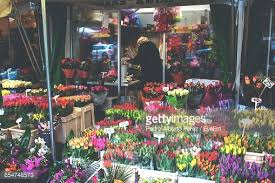 Flower Store Florist At Own Flower Store Stock Photo Getty Images