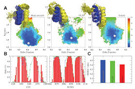 emergence and evolution of an interaction between intrinsically