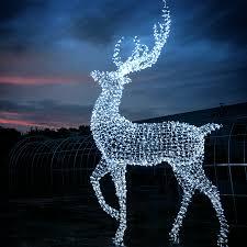 vancouver christmas light maze enchant world s largest christmas maze family fun vancouver