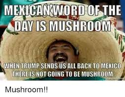 Mexican Word Of The Day Meme - mexican word of the day is mushroom when trump sends us all back