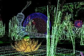 garden of lights hours wilanow palace royal garden of light groovy tale
