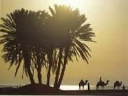 0arab_desert.jpg