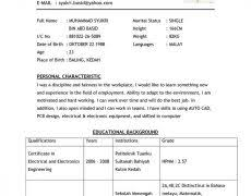 samples of resume objectives 4 objective statement example