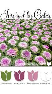 39 best color combinations images on pinterest colors colour