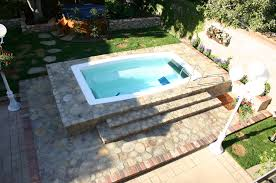 Backyard Spa Parts Landscaped Backyard Design With Form Vinyl Pool Spillover Picture