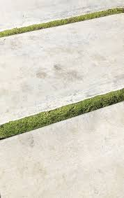 Cover Concrete With Pavers by Hardscaping 101 Ground Covers To Plant Between Pavers Gardenista