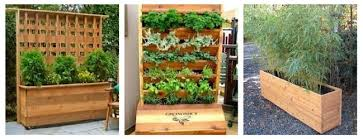 Garden Privacy Ideas Think Outside The Box 20 Creative Container Garden Ideas