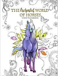 amazon enchanted horses coloring book