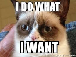 I Do What I Want Meme - i do what i want angry cat meme meme generator