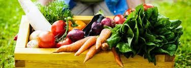 cuisine saine offrir un cours de cuisine saine et facile la santé d abord