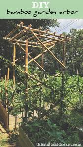 how to build a trellis from bamboo http theownerbuildernetwork