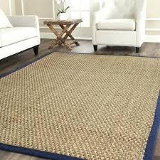 cleaning outdoor rugs home depot rugs 5 7 rug new rugs rug cleaner on home depot rugs