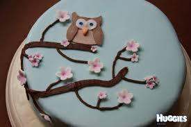 owl cake cherry blossom owl cake huggies birthday cake gallery huggies
