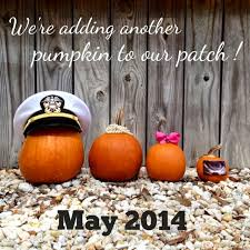 Announcing Pregnancy At Thanksgiving Best 25 Pumpkin Pregnancy Announcement Ideas On Pinterest
