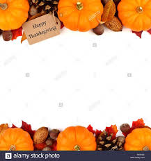 happy thanksgiving tag with autumn border of pumpkins