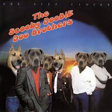 dog photo albums dogs cover albums the gossip