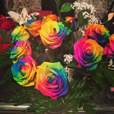 mardi gras roses inspiring mardi gras rainbow roses extremely cocochlo